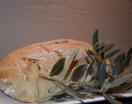 לחם זיתים ללא גלוטן